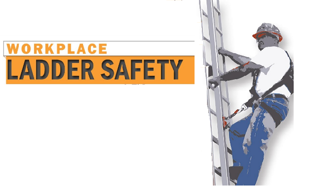 Workplace Ladder Safety