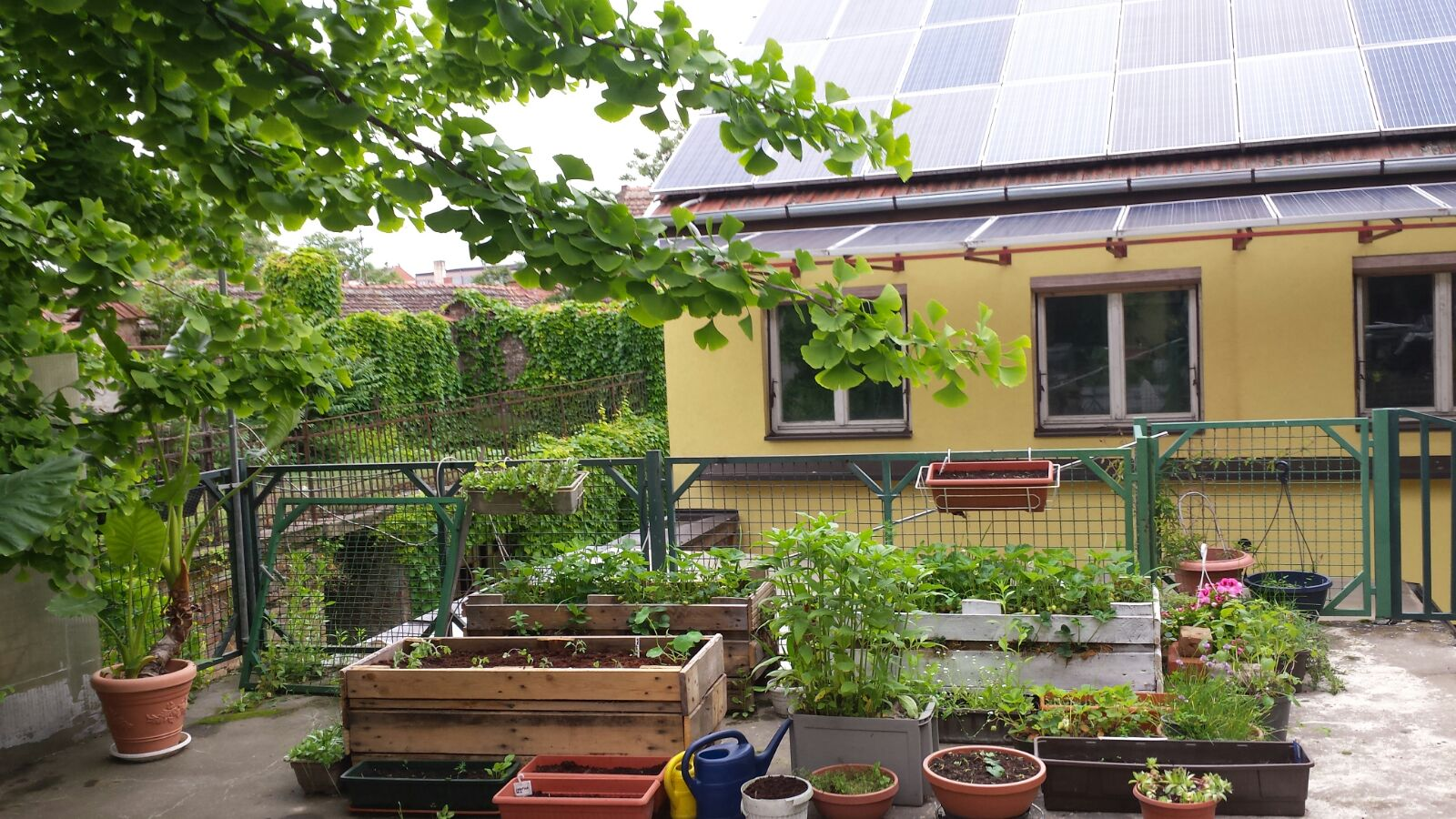 urbani vrt organski uzgoj povr a za inskog i ljekovitog bilja na balkonu terasi. Black Bedroom Furniture Sets. Home Design Ideas