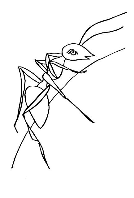 Gambar Mewarnai Semut - 17