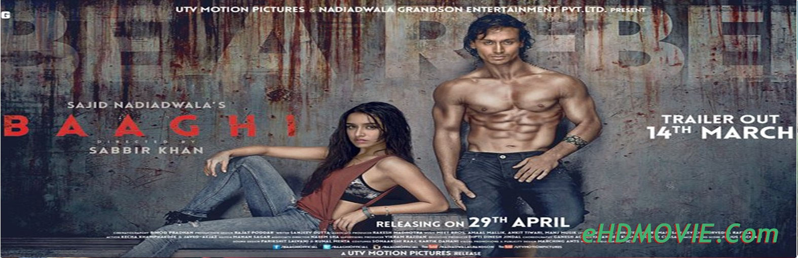 Baaghi 2016 Full Movie Hindi 720p - 480p ORG BRRip 500MB - 1.2GB ESubs Free Download