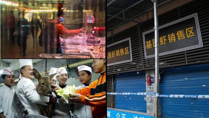 China Temporarily Bans Wildlife Trade And Plans Law Amendments In Response To Coronavirus Pandemic