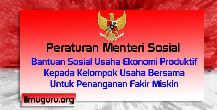 Peraturan Menteri Sosial Nomor 2 Tahun 2019