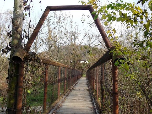Голубиное. Мост через реку Пыню