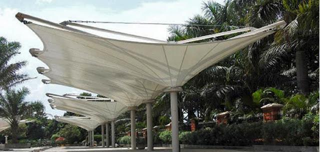membrane payung kecubung