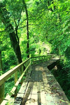 jembatan cinta curug lawe