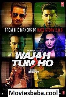 Wajah Tum Ho (2016) Full Movie Hindi HDRip 1080p | 720p | 480p | 300Mb | 700Mb
