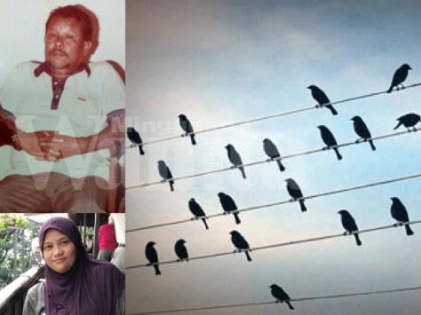 Kisah Benar Seumur Hidup Berbuat Baik Pada Haiwan, Ratusan Burung Iringi Pengebumiannya