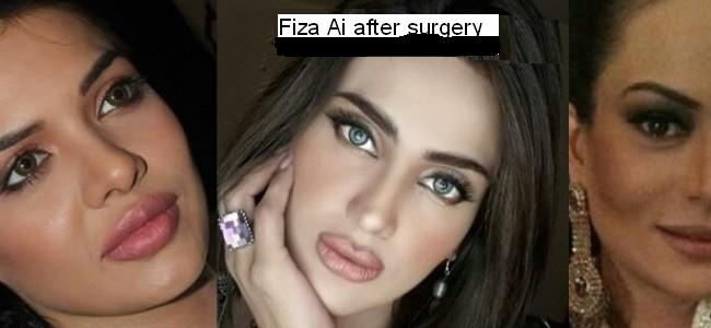 Pakistani Famous Actresses with Really Bad Plastic Surgery