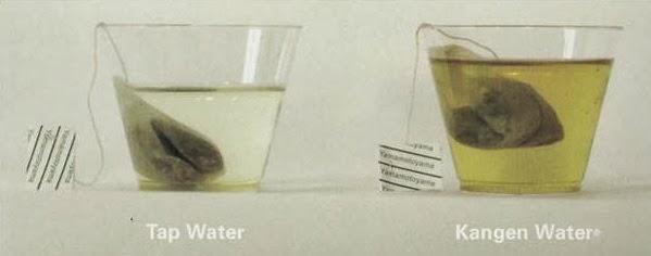 Apa Itu Kangen Water?