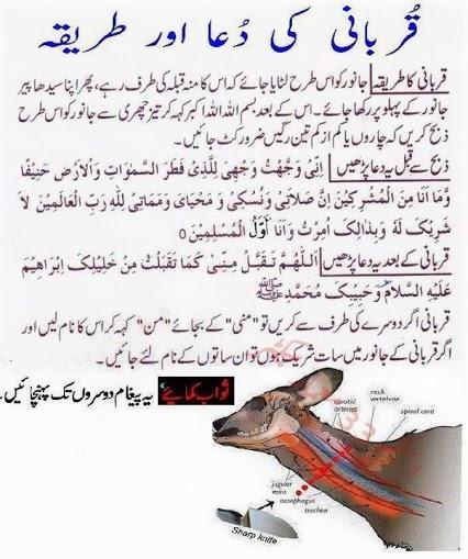 Nikah com