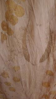 color ecodye bidulafil natural dye