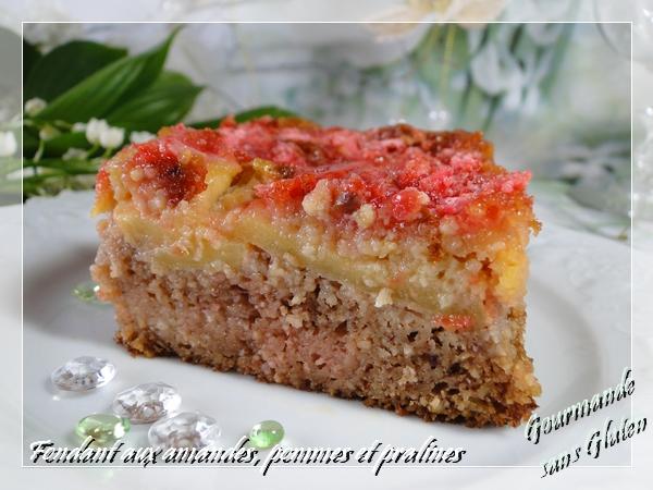 http://gourmandesansgluten.blogspot.fr/2014/05/fondant-aux-amandes-pommes-et-pralines.html