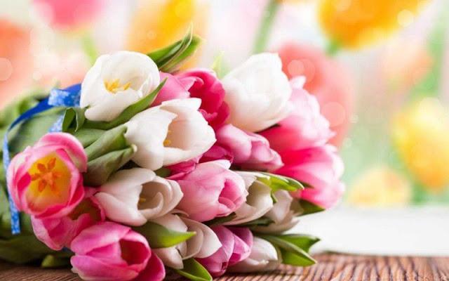 hình ảnh hoa đẹp nhất thế giới