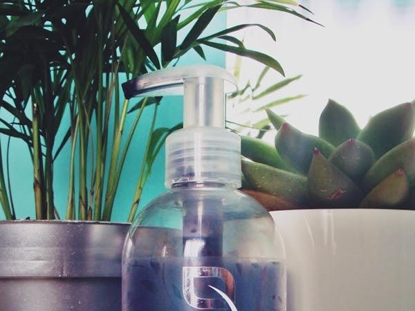 Biotaniqe, Pure Detox, Charcoal Cleanser, Węglowy żel myjący