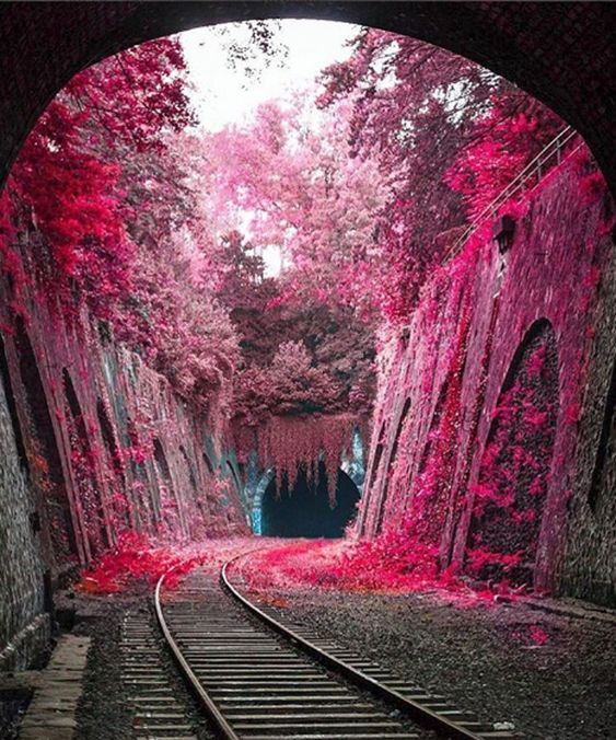 trains background images