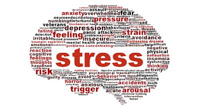Ini Nih Daftar Nutrisi Penting Anti Stress