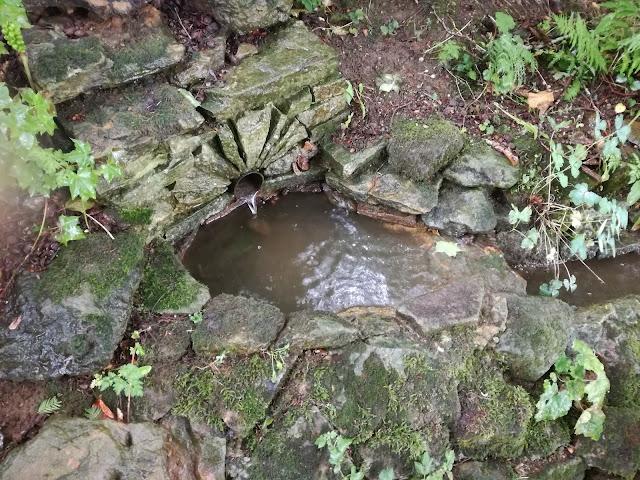 Water Garden, strumień w ogrodzie