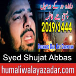 https://www.humaliwalyazadar.com/2019/02/syed-shujat-abbas-noha-ayyam-e-fatima.html