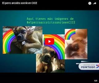 video el perro arcoiris sonrie en CICE de Dennisse