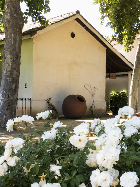 White building, flowers, and a ceramic wine jug at Undurraga Winery outside Santiago Chile