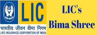 LIC Bima Shree Policy | Features & Benefits