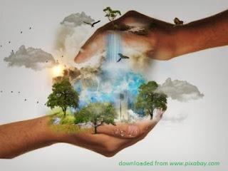 Perkenalkan: Environmental Economics