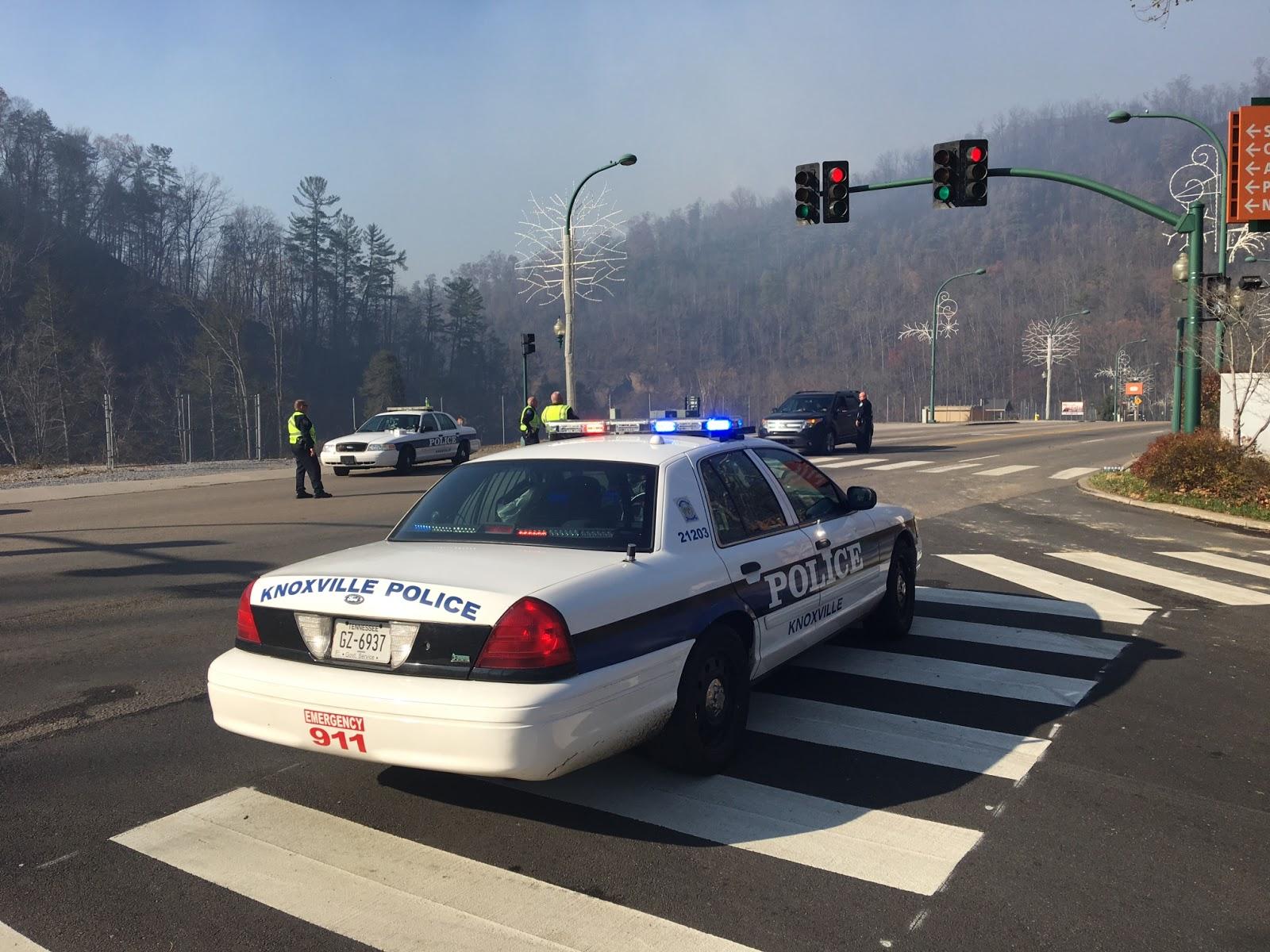 Ducks Get Police Escort Across Gatlinburg Street