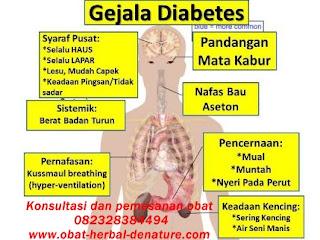obat diabetes militus,obat herbal diabetes,obat diabetes herbal,cara mengobati diabetes secara herbal,pengobatan diabetes secara herbal,pengobatan diabetes tanpa resep dokter