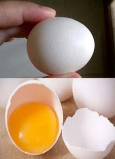 Telur ayam kampung untuk ejakulasi dini