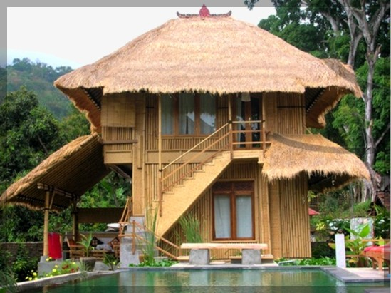 Modern bamboo houses interior and exterior designs for Bungalow design concept
