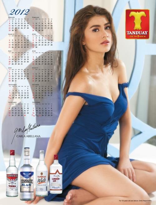 carla abellana tanduay bikini calendar pics 02