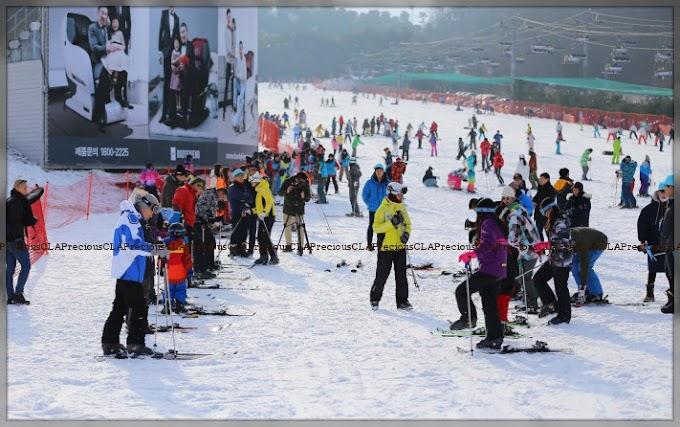 Ski Festival In Gangwon, South Korea