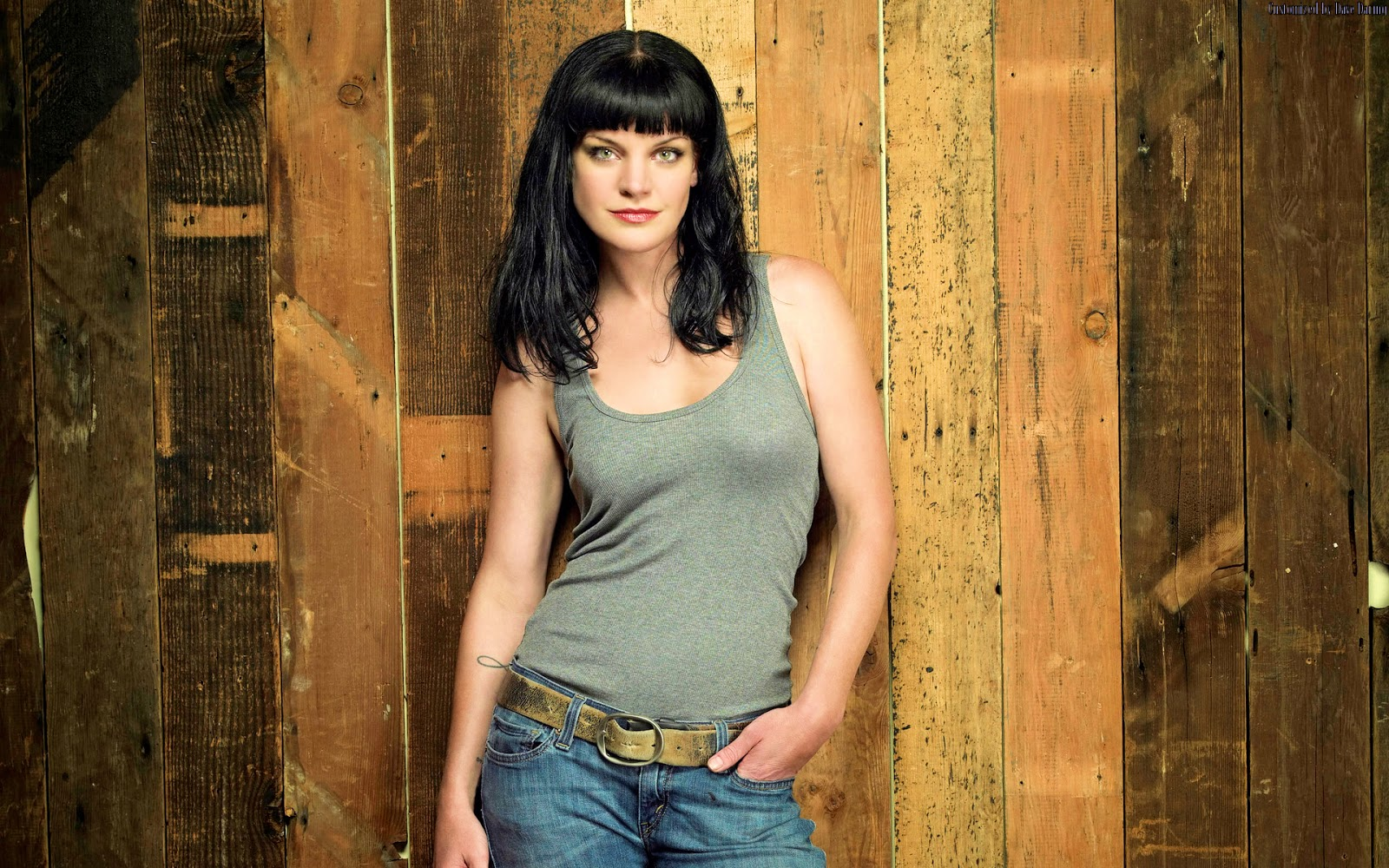 pauley perrette photos tv series posters and cast. Black Bedroom Furniture Sets. Home Design Ideas