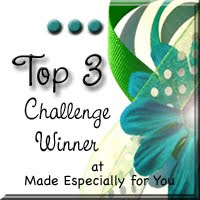 Top 3 winner at made especially for you  30/04/2012