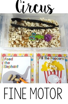 Circus sensory bin sort is a fun way to practice using tongs and scoopers.  Sort the peanuts and the popcorn after you grab them from the bin.