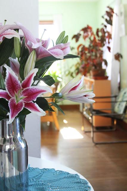 lilies, sunshine, home, houseplants, Anne Butera, My Giant Strawberry