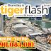 Bay đến Singapore với vé giá rẻ chỉ từ 20 USD