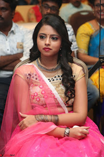 Geethanjali sizzles in Pink at Mixture Potlam Movie Audio Launch 054.JPG