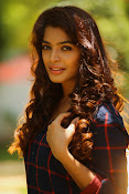 Sanchita Shetty Sizzling portfolio photos-thumbnail-6