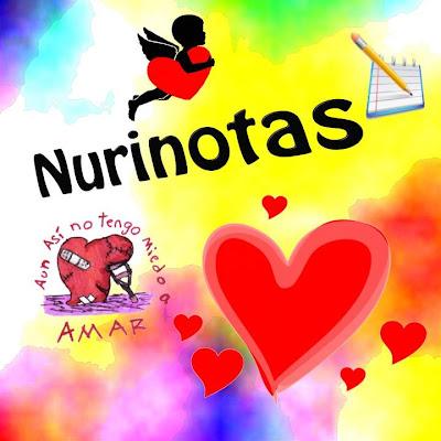 Nuevo logo de la web NuriNotas