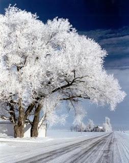 , Народный календарь, приметы и суеверия на февраль, Общие февральские приметы, Народный календарь февраря, фквральские приметы, приметы февраля на каждый день народный календарь в феврале, какие приметы есть в феврале, все про фвраль, зимние приметы, народный календарь, приметы и суеверия, на февраль, февраль, зима, приметы на февраль, народный календарь на февраль, погода в феврале, зима, зимние месяцы, приметы про зиму, народные приметы, февральские приметы, зимние приметы, праздники февраля, 1 февраля, календарь примет, народные поверья, снег в феврале, Масленица, еонец зимы, проводы зимы, про приметы, про поверья, про февраль, про зиму,зима, зимние месяцы, календарь народный, мудрость народная, февраль, приметы на февраль, традиции февраля , календарь примет, календарь февраля, приметы на каждый день, приметы о погоде в феврале, приметы на февраль, февраль 2018 года, приметы и суеверия на февральhttp://prazdnichnymir.ru/ Народный календарь, приметы и суеверия на февральз, народный календарь, приметы и суеверия, на февраль, февраль, зима, приметы на февраль, народный календарь на февраль, погода в феврале, зима, зимние месяцы, приметы про зиму, народные приметы, февральские приметы, зимние приметы, праздники февраля, 1 февраля, календарь примет, народные поверья, снег в феврале, Масленица, еонец зимы, проводы зимы, про приметы, про поверья, про февраль, про зиму,има, зимние месяцы, календарь народный, мудрость народная, февраль, приметы на февраль, традиции февраля , календарь примет, календарь февраля, приметы на каждый день, приметы о погоде в феврале, приметы на февраль, февраль 2018 года, приметы и суеверия на февральhttp://prazdnichnymir.ru/ Народный календарь, приметы и суеверия на февраль