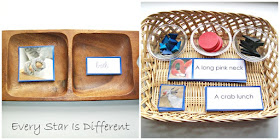Bird themed Montessori Blue Series Work (Free Printable)