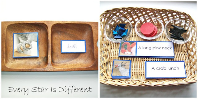 Bird themed Montessori Blue Series Work (Free Printable)
