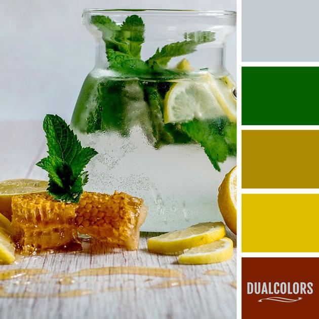 color_paleta_58