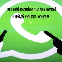 Cara Mudah Mematikan Fitur Auto Download Pada WhatsApp, Lengkap!