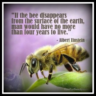 But the Bees! ALL pollinators really