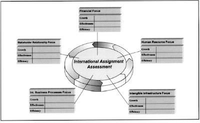 international assignment assessment