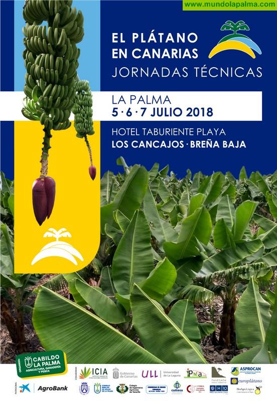 06/15/18 | Noticias de La Palma