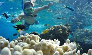 aktivitas snorkeling di Pulau tidung