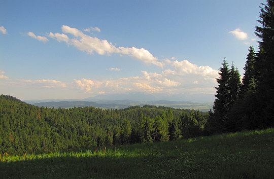 Tuż ponad Przełęczą Knurowską - widok na Kotlinę Nowotarską i Tatry.